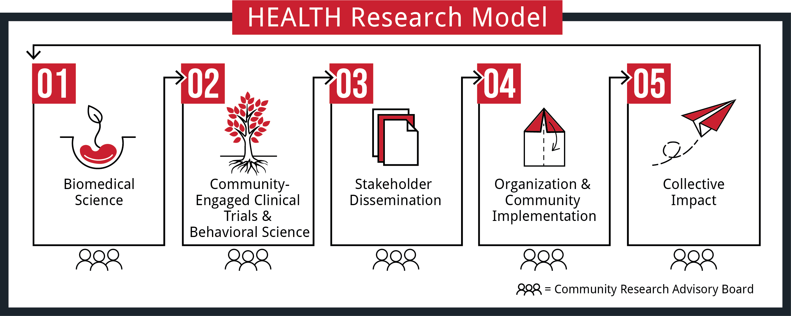 The 5 Step HEALTH Research Model illustration. Step 1: Biomedical Science. Step 2: Community-Engaged Clinical Trials and Behavioral Science. Step 3: Stakeholder Dissemination. Step 4: Organization and Community Impact. Step 5: Collective Impact.